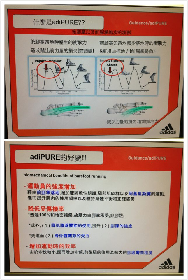guidance adiPURE - Google 搜尋